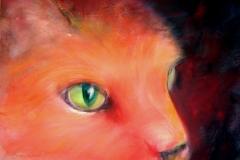 34-cats_eyes
