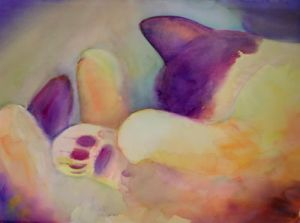Sleeping Paws
